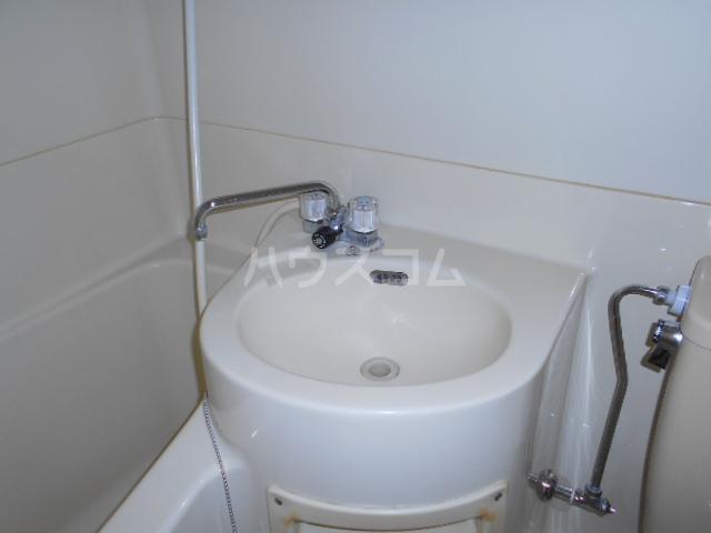 サンクチュアリーフォレスト 402号室の洗面所