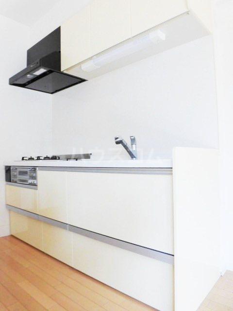 ピオーネ覚王山 203号室のキッチン