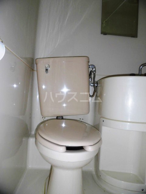 fメゾン振甫 302号室のトイレ