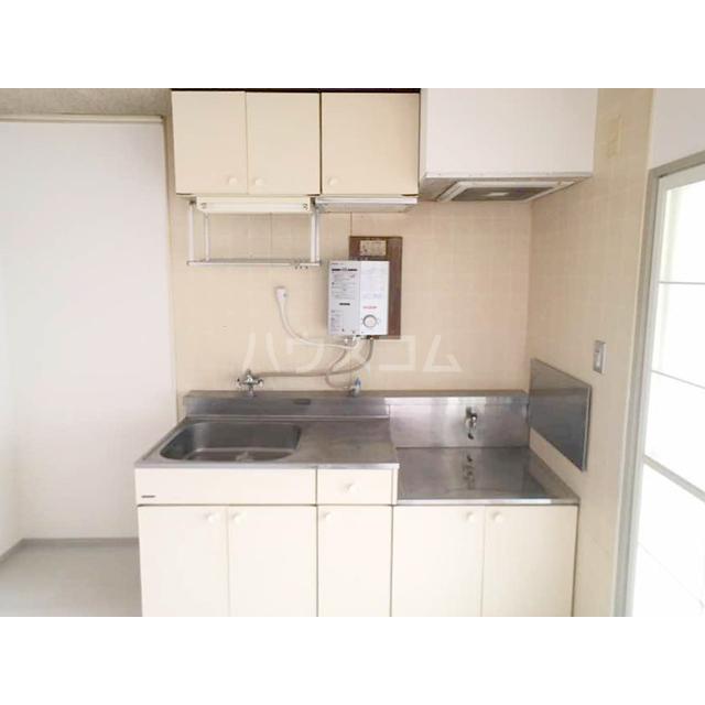 ファミール東松山 203号室のキッチン