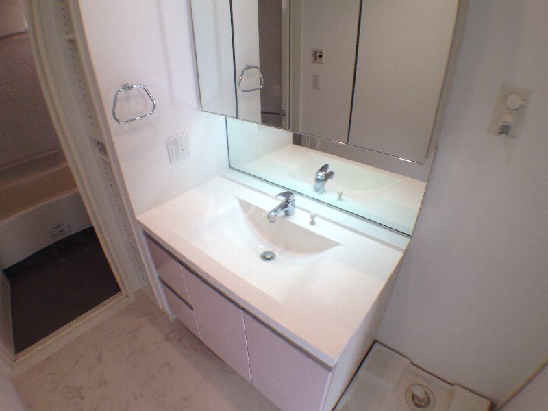 エクセレンシア駒込 401号室の洗面所