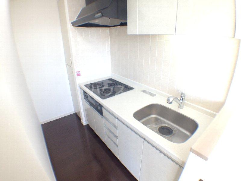 エクセレンシア駒込 401号室のキッチン