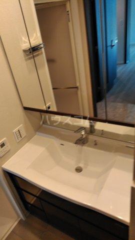 ザ・レジデンス駒込染井 207号室の洗面所