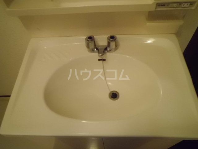 メゾンセンチュリーⅡ 1-B号室の洗面所