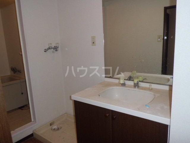 ハイラーク高崎 507号室の洗面所