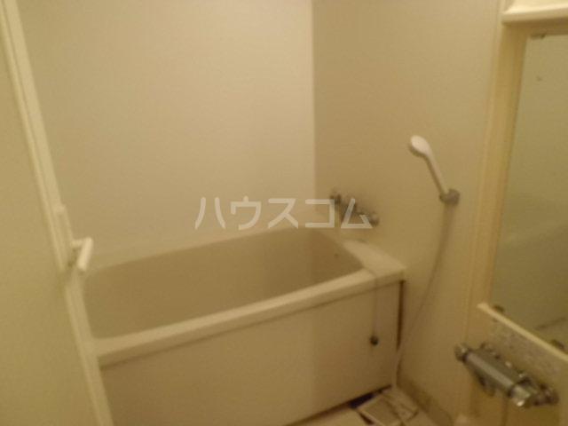 ハイラーク高崎 507号室の風呂