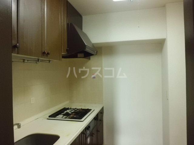 ハイラーク高崎 507号室のキッチン