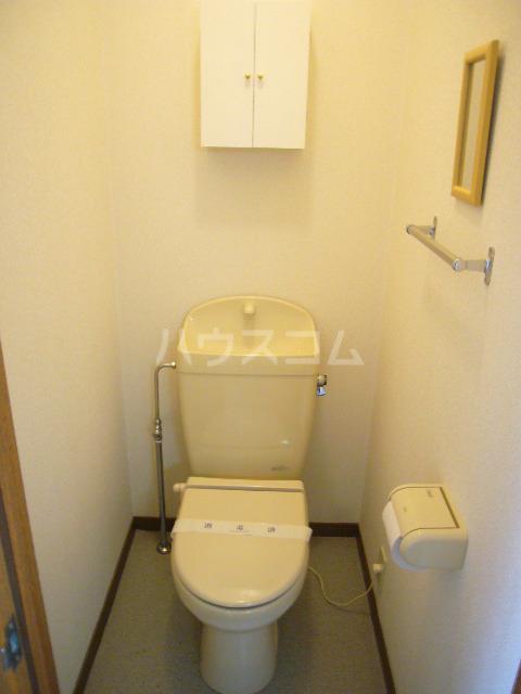 シティーハイツ サイネリアA棟 107号室のトイレ