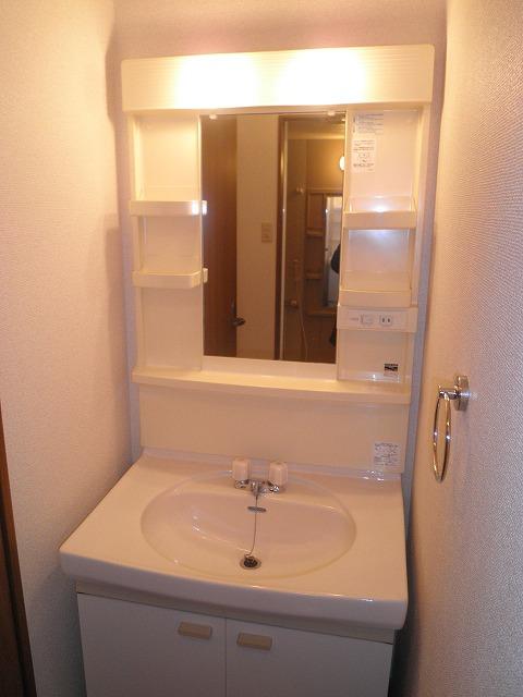 サンエール池の上 A棟 201号室の洗面所