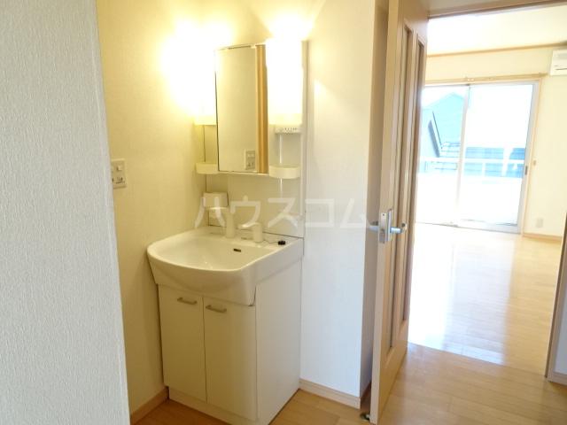 テラ・メゾン B棟 210号室の洗面所