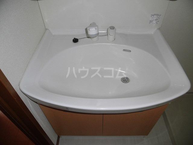 ルミエール植出 202号室の洗面所