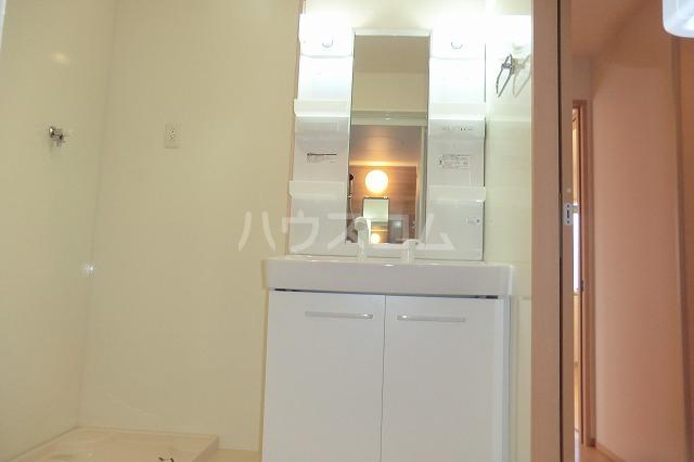 シャルマン ヴィー B 202号室の洗面所