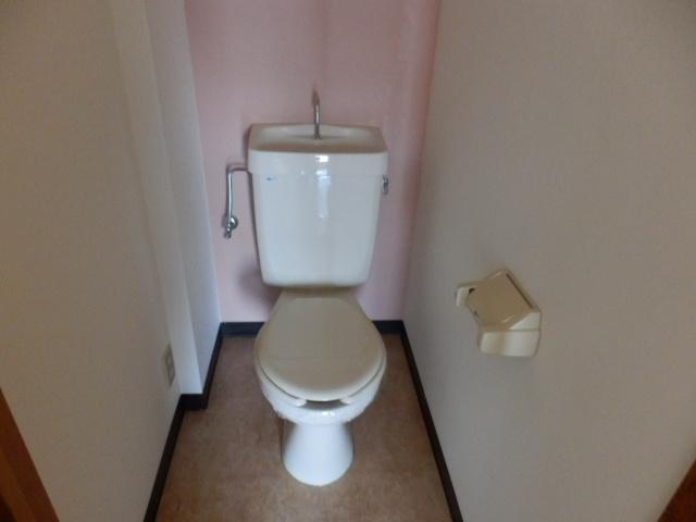 丸山ビル 20A号室のトイレ