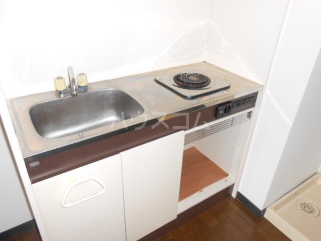 プラゼール 2B号室のキッチン