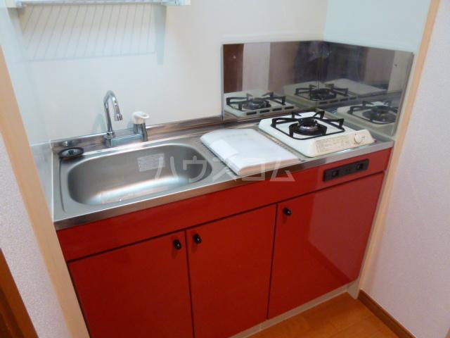CASA松原(カーサマツバラ) 203号室のキッチン