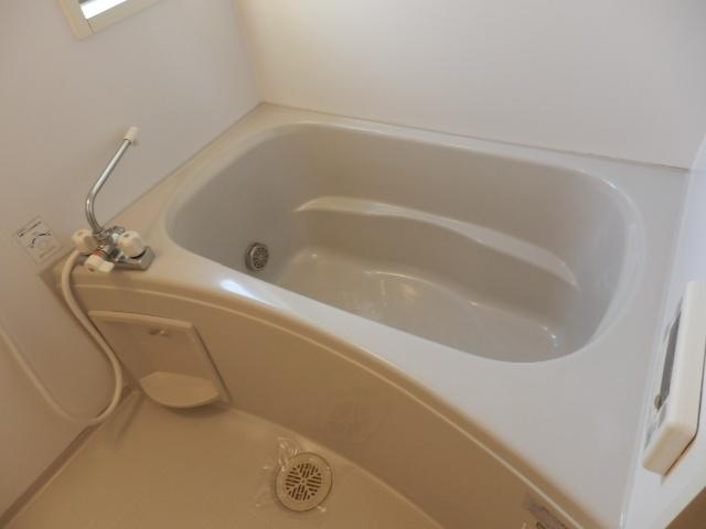 ガーデンガリジェ 202号室の風呂