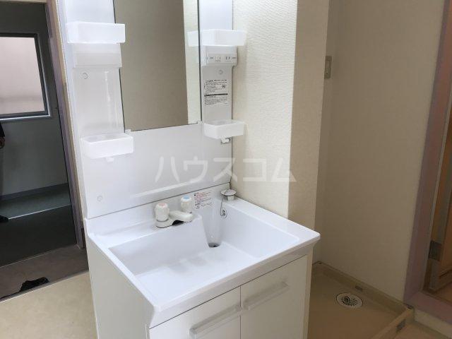 ツインビラ 202号室の洗面所