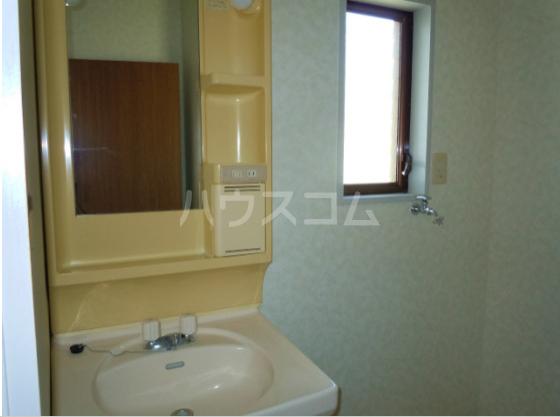 メゾンド角田Ⅱ 202号室の洗面所