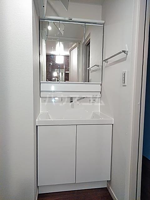 エルスタンザ綾瀬DEUX 202号室の洗面所