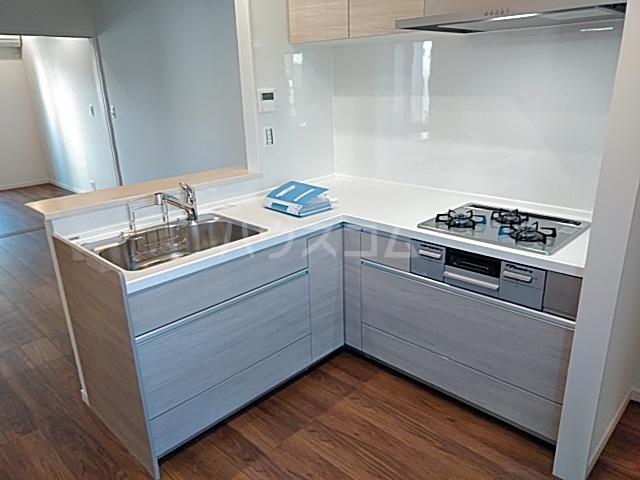 エルスタンザ綾瀬DEUX 207号室のキッチン