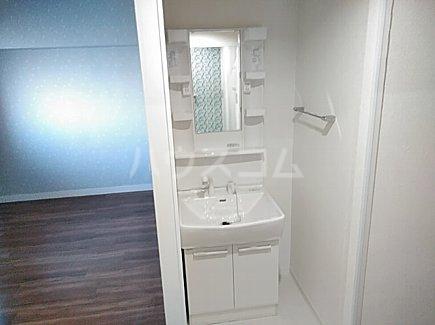 千代田グリーンハイツ 402号室の洗面所