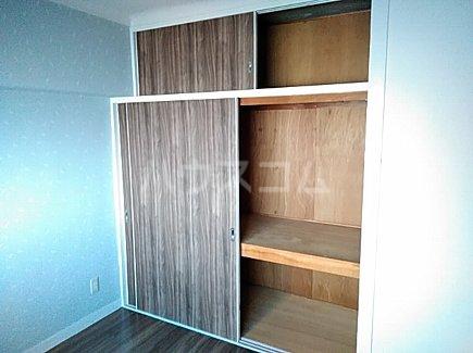 千代田グリーンハイツ 402号室の収納