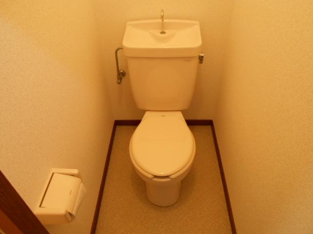 第三ダイケンハイツ 201号室のトイレ
