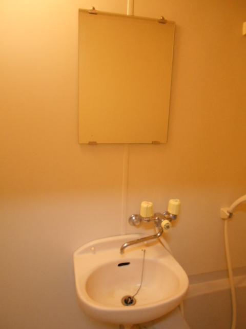 第三ダイケンハイツ 201号室の洗面所