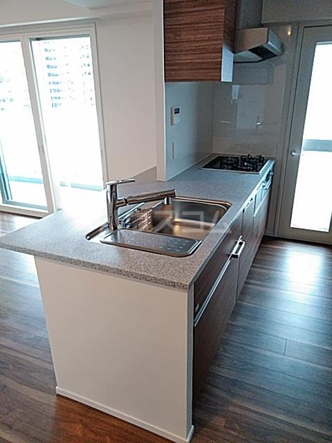グランカーサ北浦和 101号室のキッチン