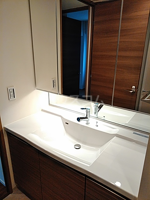グランカーサ北浦和 101号室の洗面所