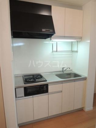 グランドゥール 203号室のキッチン