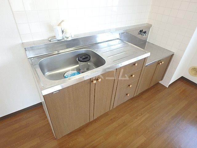パシフィー松本 301号室のキッチン