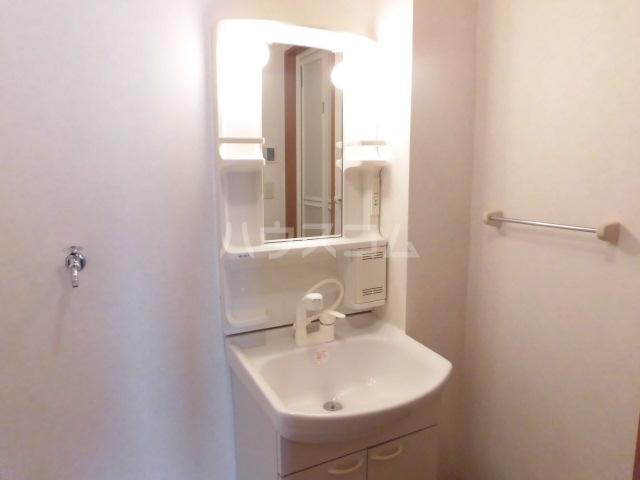 ハッピーメモリー 203号室の洗面所