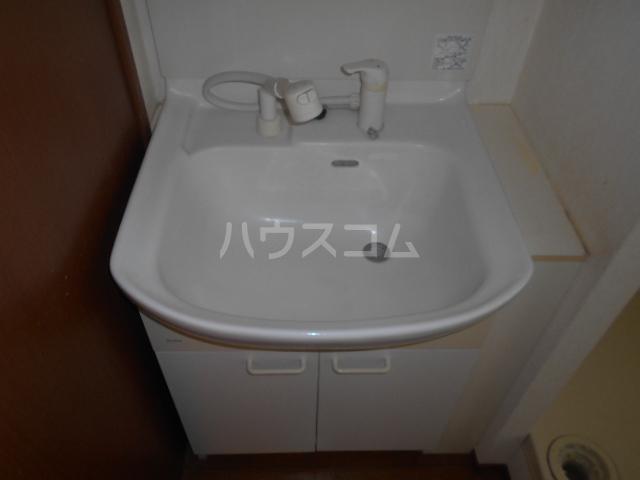 シーダーハウスⅡ 201号室の洗面所