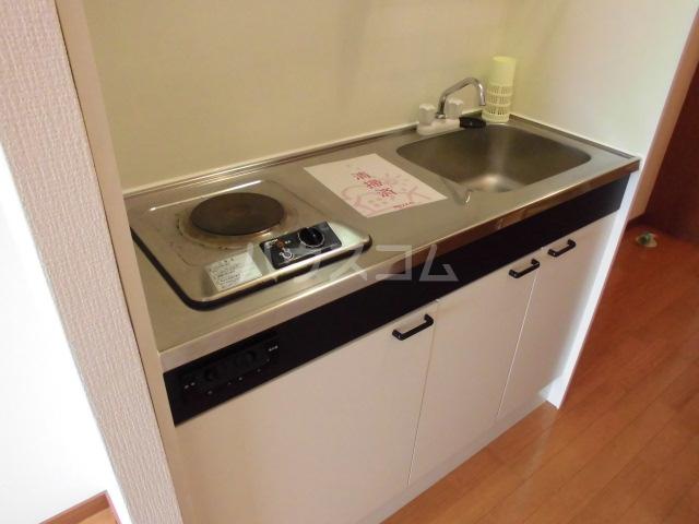 ロックハイツⅡ 308号室のキッチン