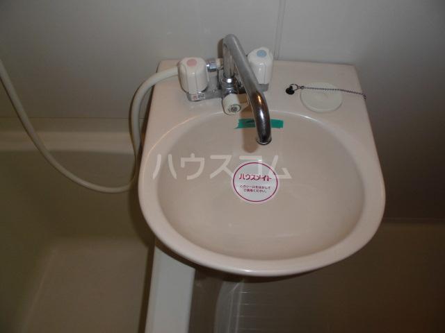 ロックハイツⅡ 308号室の洗面所