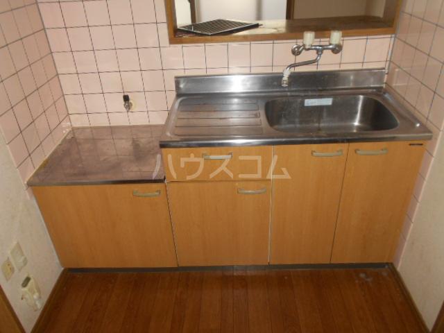 ピカデリーヒルズA 102号室のキッチン