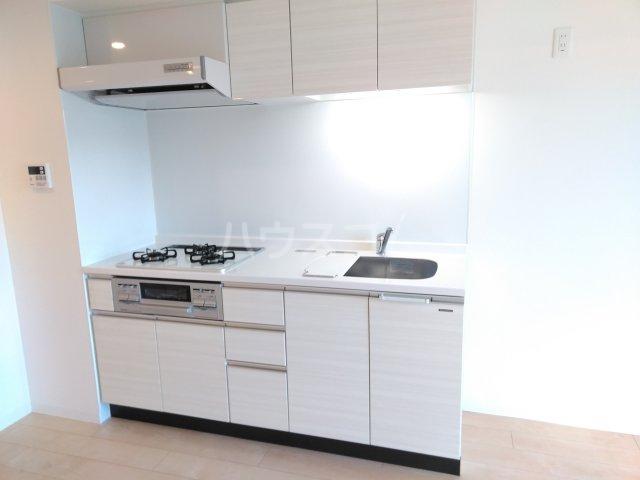Delphi 401号室のキッチン