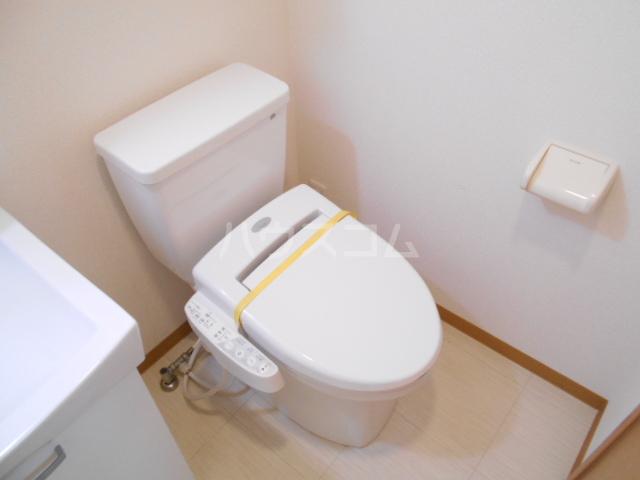 フラッティ今出川天神 303号室のトイレ