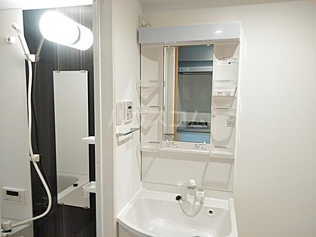 エスカーサ京都四条梅津 205号室の洗面所