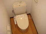 パレス・オーシャンビュー 305号室のトイレ