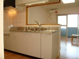 パレス・オーシャンビュー 305号室のキッチン
