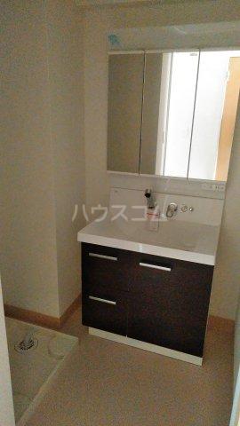 グランデュール K 201号室の洗面所