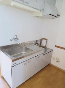 オーシャンパレスウィズペット 407号室のキッチン