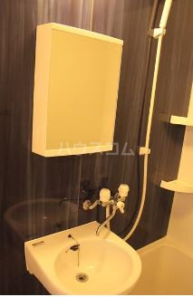 Villa IRIS 401号室の洗面所
