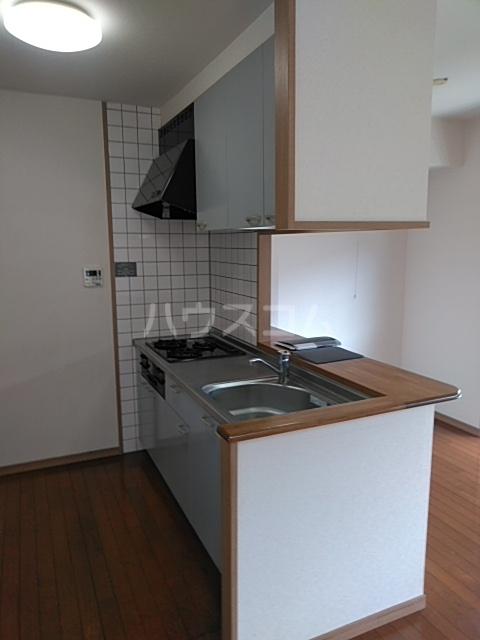 S-FORT上小田井 402号室のキッチン