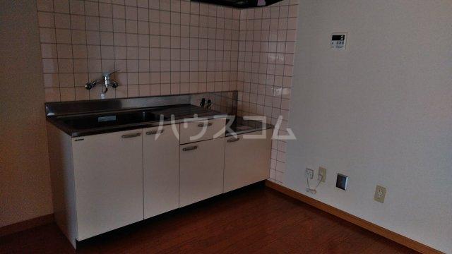 ユーミーハヤミズ 204号室のキッチン