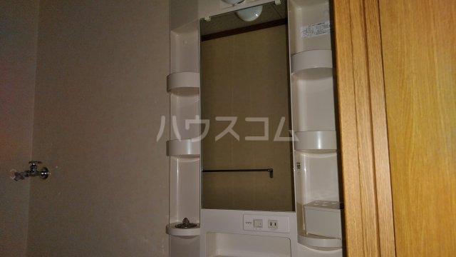 ユーミーハヤミズ 204号室の洗面所