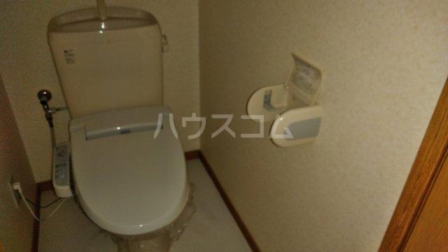ユーミーハヤミズ 204号室のトイレ