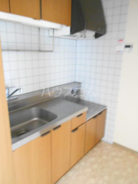 ベ・ハーゲンハイム城東 302号室のキッチン